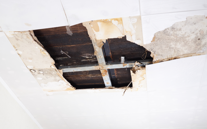 water damage restoration white plains
